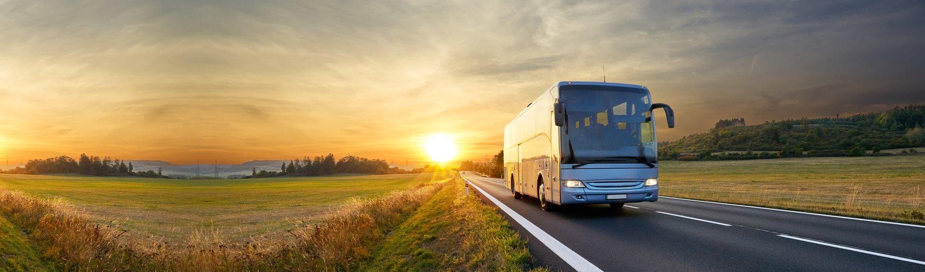 Cómo ayuda nuestro software a las compañías de transporte